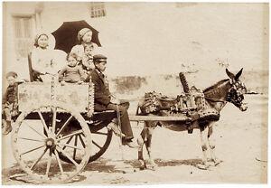 Palermo Sicilian cart Large original unmounted albumen photo 1880c Incorpora