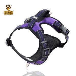 Dog Harness BrotherCatDog Adjustable Top Handle Reflective Large Purple L