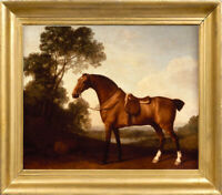 "Old Master Art Portrait Saddled Bay Hunter Horse Oil Painting Unframed 30""x40"""