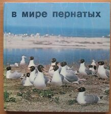 Soviet Russian Photo Book Album Bird Duck USSR Feathered USSR Old Seagull heron
