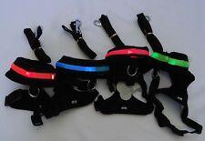 New Dog Puppy Pet Blue LED Flashing Light Blue Vest Leash Mesh Harness set sz L