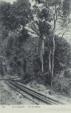 * BRAZIL - Rio de Janeiro - E.F.Corcovado, Railway