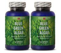 immune tablets - BLUE GREEN ALGAE - spirulina 500mg tablets 2B