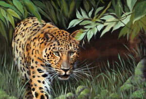 Original Oil Painting Leopard Wildlife Art by Christina Schulte