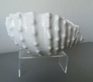 Vintage Ceramic Pottery White Sea Shell Small Planter Ornament