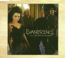 EVANESCENCE Call me when ACOUSTIC & 2 VIDEO MAKING of Europe CD single USA Seler