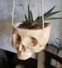 Skull Hanging Planter ~ Indoor ~ Outdoor ~ Succulent ~ Halloween ~ Storage