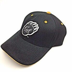 Cal Berkeley Golden Bears Fitted Hat 7 3/8-Team Spirit-Free Shipping