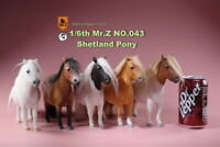 MR. Z MRZ043 1/6 Shetland Pony Horse Animal Collectible Figure Model Toys Gift