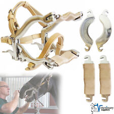 ENQUINE Dental Speculum HORSE MOUTH GAG w/4 PLATES Authentic BrOwn LEATHER STRAP