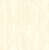 Kokosmatte suciedad captura maletero türmatte coco 20mm 50 x80 cm felpudo