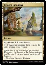 MTG Magic XLN - (x4) Unknown Shores/Rivages inconnus, French/VF
