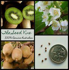 20+ ORGANIC KIWI FRUIT SEEDS (Actinidia deliciosa) Edible Fruit Flower Vine