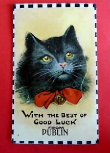 Cats. Black cat.  With the best of Luck from Dublin. Novelty pull out. Pu.1925