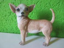 """Deko Figur """"Chihuahua"""" Dog 17cm Tierfigur Skulptur Statue Rasse Mexiko Schoßhund"""