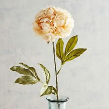 Pier 1 Imports Artifical Flower Peony Stem Faux Cream Fall Spring New