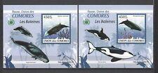 Comoros 2009  Various Types of Whales-Violet Background MNH Mini Souvenir Sheets
