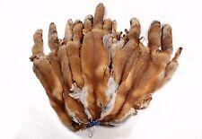 4950 Norwegian Red Fox Pelts Skins Furs   Norwegische Rotfuchsfelle Echt Pelz