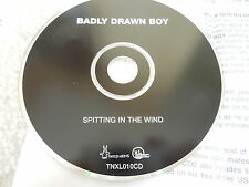 Rare Promo Badly Drawn Boy - Spitting In The Wind CD Single Indie Pop