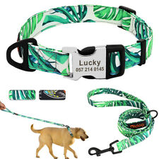 Small Large Personalised Dog Collar &Lead Custom Pet Name ID Tag Buckle Engraved