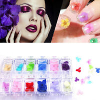 12-Colors 3D Real Dry Dried Flowers for UV Gel Acrylic Nail Art Beauty Decor G9Z