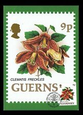 Guernsey 484 Clematis Freckles 1993 Maxi-Card First Day Cover gur484-1