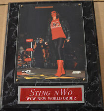 STING nWo FRAMED 8 X 10 PHOTO-MAN CAVE ART-12X15 WALL PLAQUE  DISPLAY WWE WCW