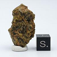Diogenite NWA7831 HED Achondrite Vesta Meteorite; Space Olivine; 11.64g/1pc