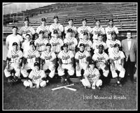 1955 Montreal Royals Team Photo 8X10 Brooklyn Dodgers Minors Drysdale Lasorda