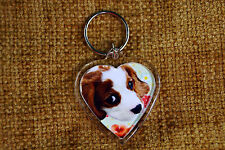 Cavalier King Charles Spaniel Gift Keyring Dog Key Ring Birthday Gift