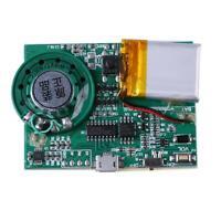 Programmierbare Sound-Chip Chip Musik Board Sprachmodul für DIY-Grußkarte FG#1