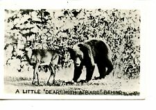 "Little Deer ""Dear"" w/ Bear ""Bare"" Behind-RPPC-Real Photo Vintage Postcard"