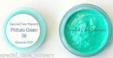 Genesis heat set paint 2g/ml Phthalo Green 06 - Buy any 5 pots get 6th FREE!