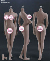 TBLeague Phicen Female Seamless Action Body with Steel Skeleton S12D