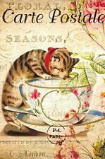 Postcard French Vintage Shabby Chic Style, Cat with Cup n Saucer, Floral 8K