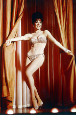 Natalie Wood Very Sexy Full Length In Bra And Panties Gypsy 11x17 Mini Poster