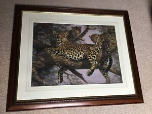 Beauriful Limited Ed Framed Print The Family Tree Leopard Lee Kromschroeder