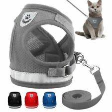Cat Dog collar Adjustable Harness Vest Walking Lead Leash Collar For Dogs Puppy