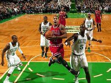 Derrick Rose Unsigned 8x10  Chicago Bulls (2)