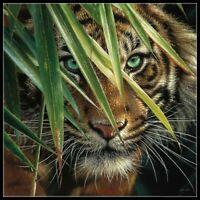 Tiger Eyes - Chart Counted Cross Stitch Pattern Needlework Xstitch craft DIY