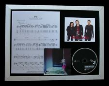 GOO GOO DOLLS Iris LTD GALLERY QUALITY CD FRAMED DISPLAY+EXPRESS GLOBAL SHIPPING