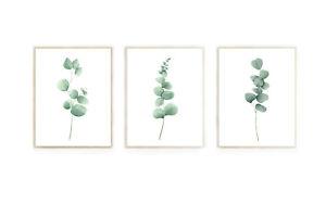 Eucalyptus wall prints, eucalyptus wall art, botanical wall art, home decor