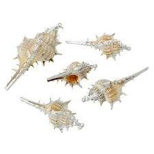 5PCs Shell Charm Pendants Conch Natural Silver Plated High Quality