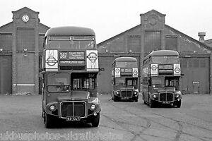 London Transport RM1077,1087 & 1093 Fulwell Garage Bus Photo Ref P666