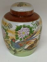 Awesome vintage small Japanese peacock vase urn ginger jar 6x4.5 Peacock