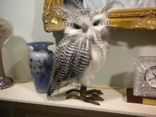 Reproduction Owl Taxidermy Bird Mount - glass eyes looks real