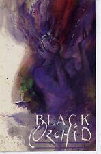Black Orchid Preview Promo 1988 Dc Comics Nm Dave McKean