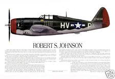 """""""P-47 Ace, Robert Johnson"""" Ernie Boyette Print Co-signed by Robert Johnson"""