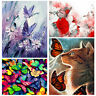 DIY Paint By Number Kit Digital Oil Painting Wall Home Decor Scenery Butterfly