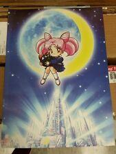Sailor Moon R Chibiusa Crystal Palace poster PGSM.